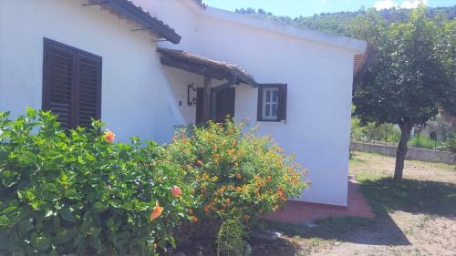 Maison jumelée à Zambrone