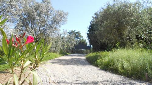 Villa in Montespertoli