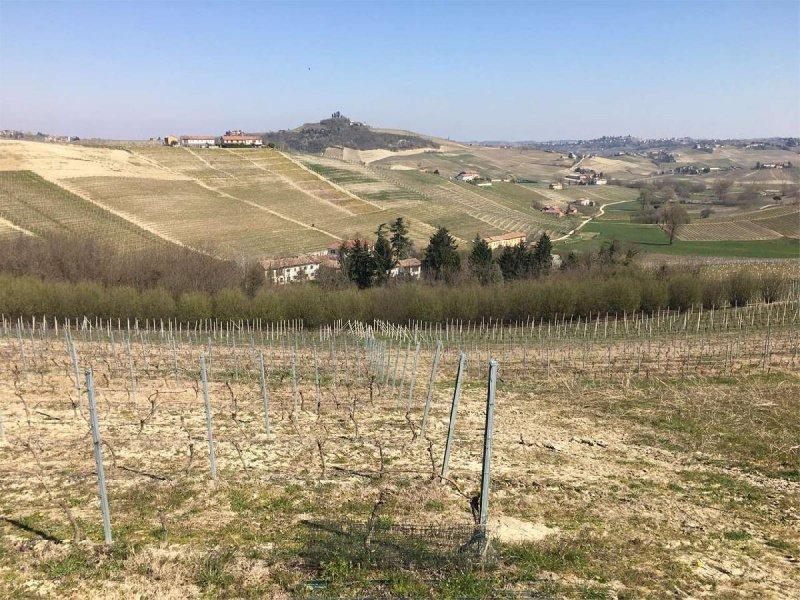 Hus i Costigliole d'Asti