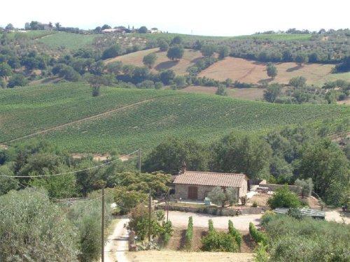 斯坎萨诺农舍