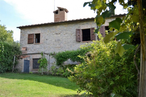 Farmhouse in Scansano