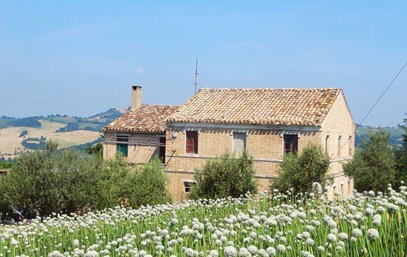 Bauernhaus in Cupra Marittima