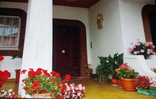 Villa a Castelfidardo