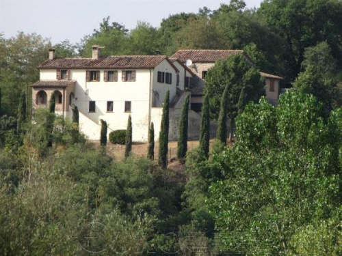 House in Montone
