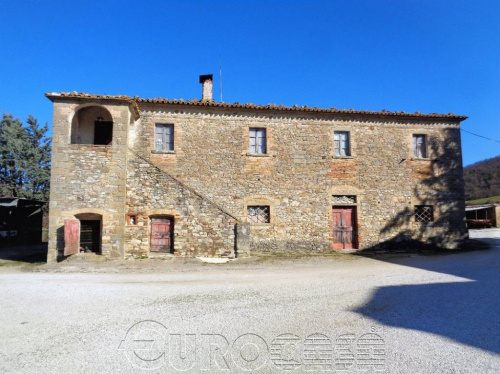 Farmhouse in Montone