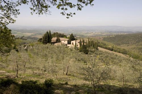 Farm in Castellina in Chianti