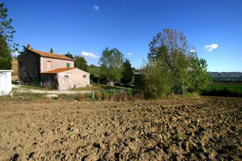 Detached house in Mondavio