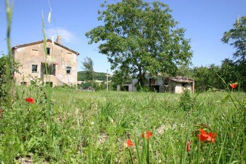 Haus in Arcevia