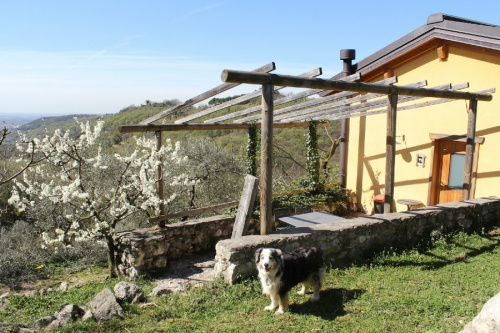 Agriturismo a Verona