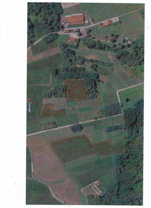 Landwirtschaftlicher Betrieb in Oleggio