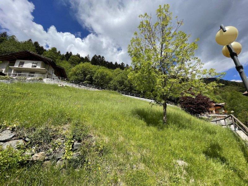 Terreno edificable en Porte di Rendena