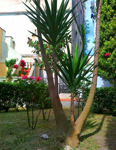 Detached house in Brindisi