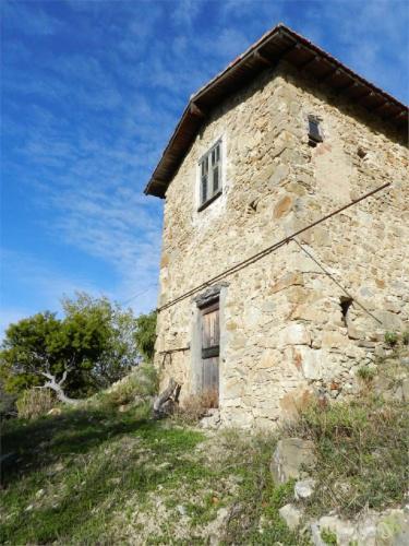 博尔迪盖拉房屋