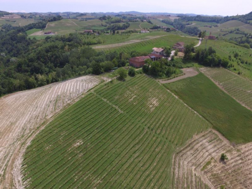 Casa di campagna a Monforte d'Alba