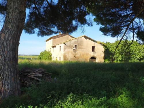 Azienda agricola a Velletri