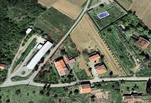 Parhus i Cassine