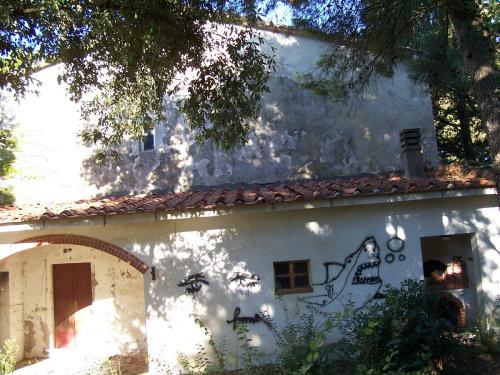 Casa di campagna a Casciana Terme Lari