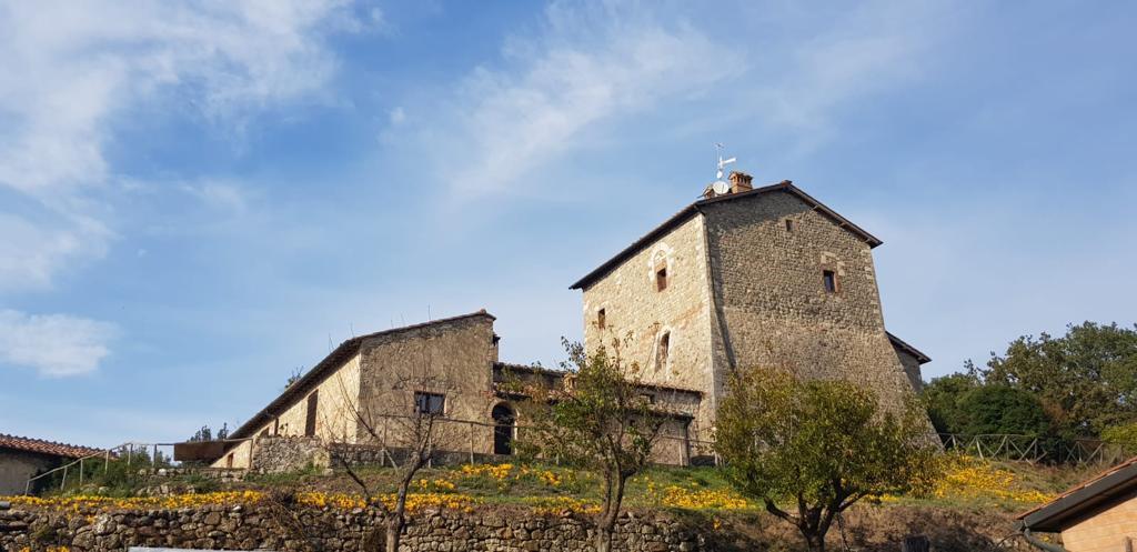 Turm in Chiusdino