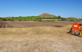 Agricultural land in Sorso