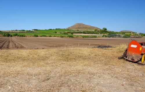 Jordbruksmark i Sorso
