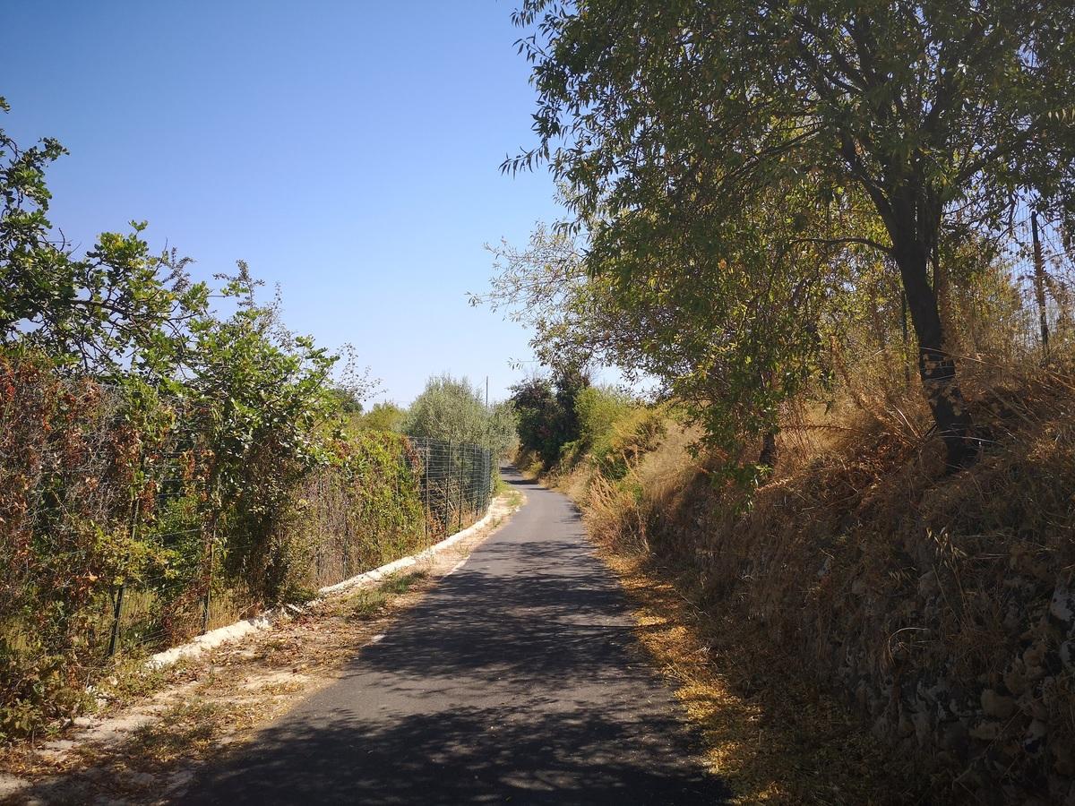 Landwirtschaftlicher Betrieb in Noto