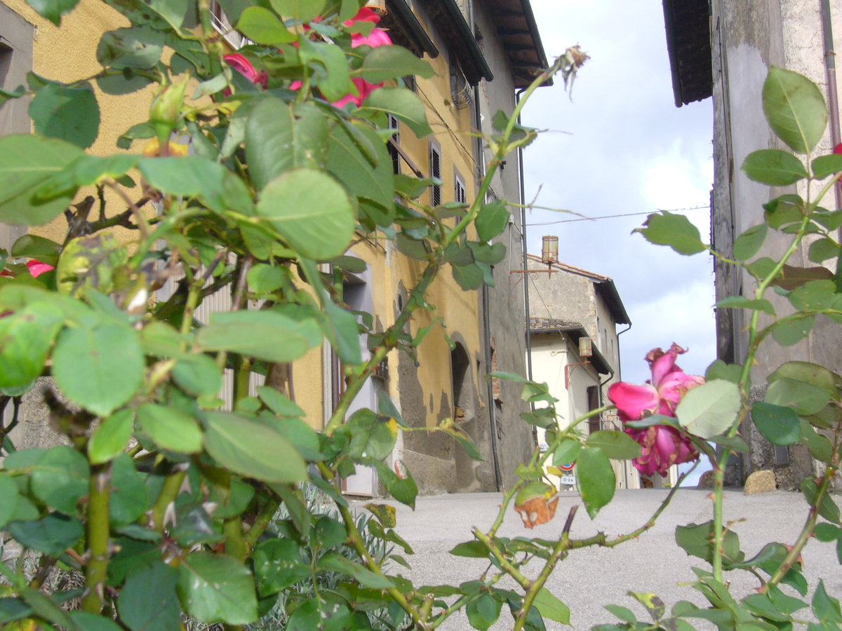 Apartment in San Gimignano