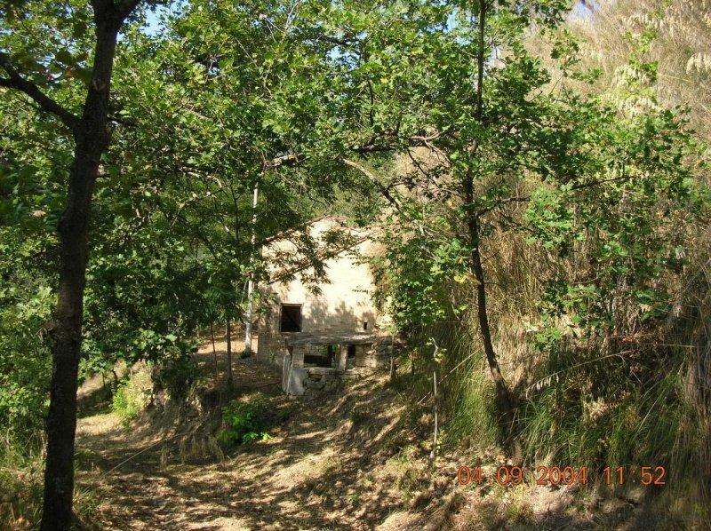 Landwirtschaftliche Fläche in Massignano
