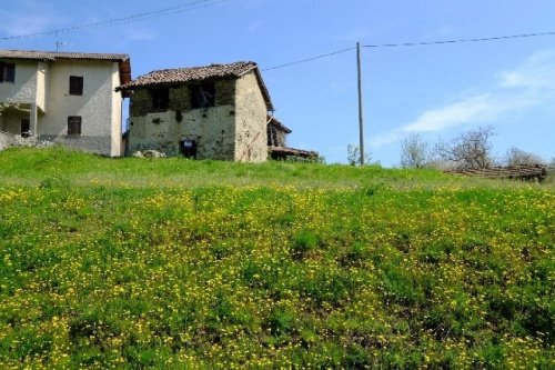 苗利亚房屋