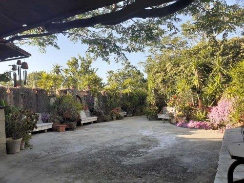 Casa de campo en Mola di Bari