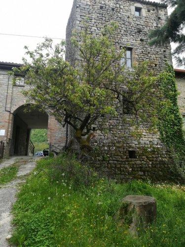 Casa de campo en Ponte Nizza