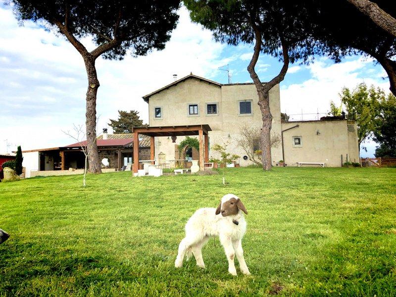 Farmhouse in Rome