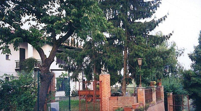 Casa de campo en Altavilla Monferrato